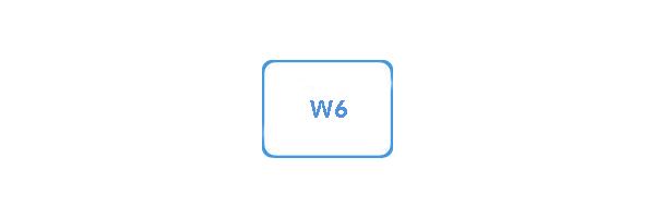 Spulen für W6